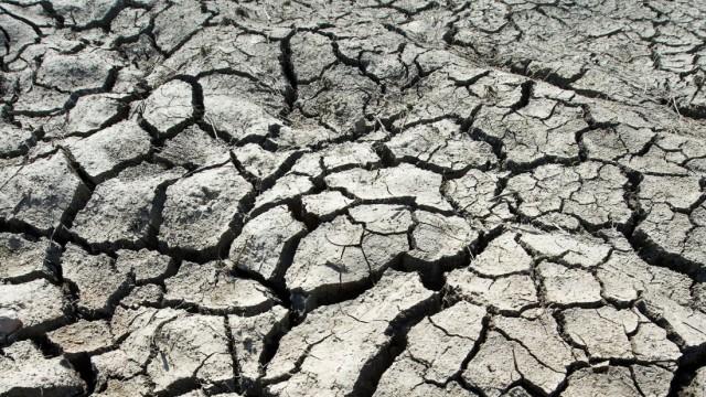 Trockenheit im Oderbruch.
