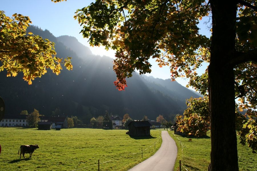 Leser-Foto Herbst Deutschland Imberger Horn Bad Hindelang