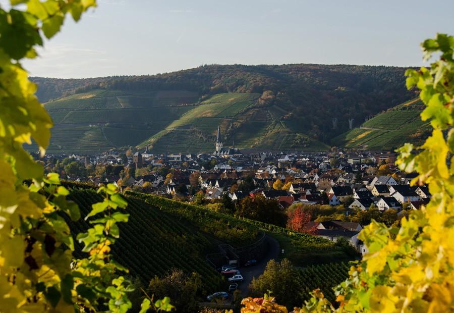 Leser-Foto Herbst Deutschland Ahrtal Ahrweiler