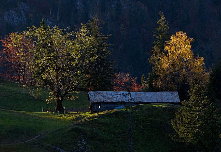 Leser-Foto Herbst Deutschland Hölleialm Bayern
