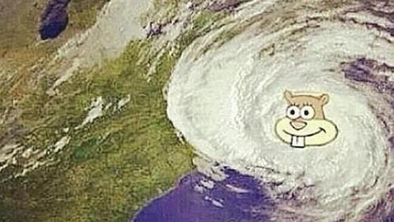 """Hurrikan Sandy und Sandy aus """"Spongebob Schwammkopf"""""""