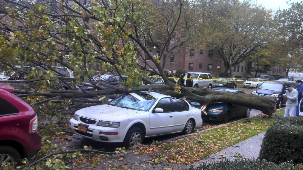 Damaged cars sit under a fallen tree from high winds in the Queens borough of New York