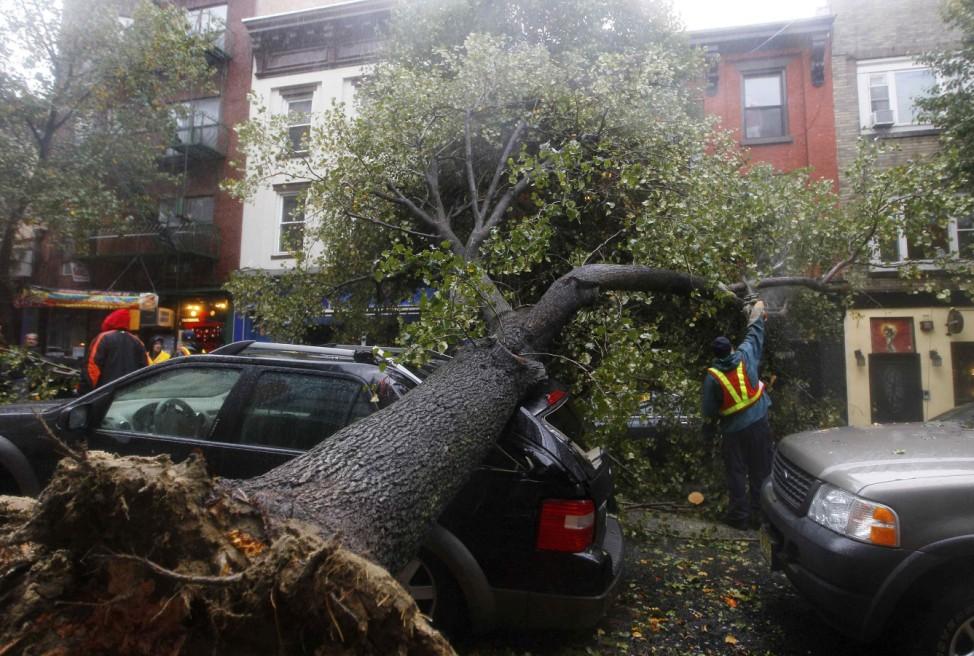 """Ein von Hurrikan """"Sandy"""" entwurzelter Baum in New Jersey"""