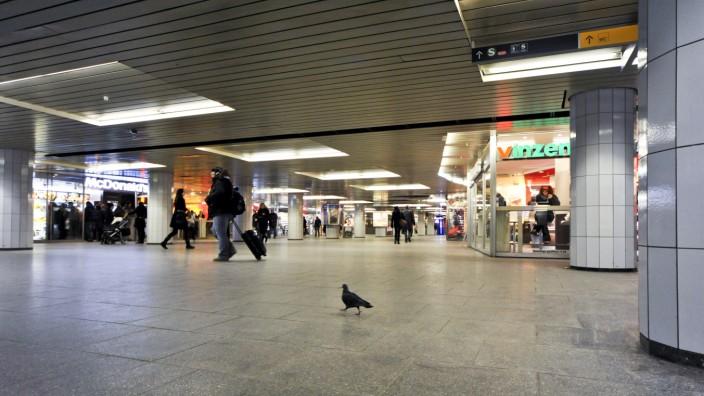 Taube im Hauptbahnhof Zwischengeschoß, 2011