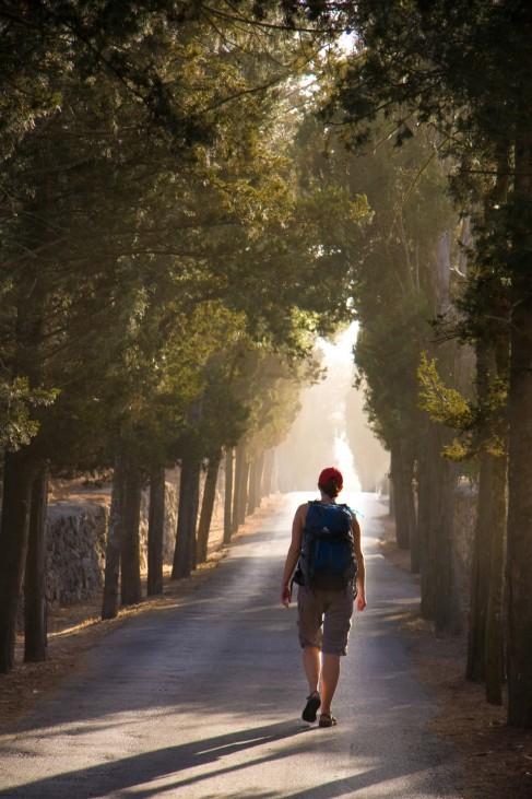 Die Entdeckung der Langsamkeit - Wandern auf dem Jesus Trail