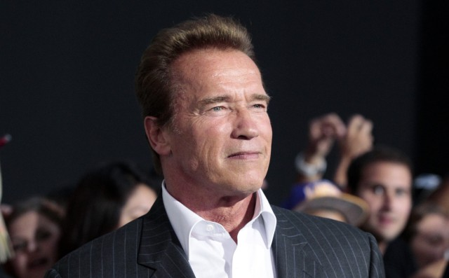 File of cast member Schwarzenegger posing at the premiere of 'The Expendables 2' in Hollywood
