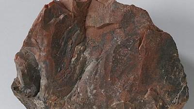 Stein vom Mond: Er ist doch nicht himmlisch, sondern nur irdisch: Der Brocken, den das Amsterdamer Rijksmuseum als Mondgestein ausgestellt hatte, ist ein versteinerter Baum.