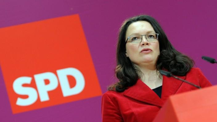 Andrea Nahles SPD FDP Rainer Brüderle Sexismus Stern Himmelreich