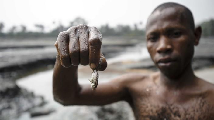 Local Nigerian farmers take Shell to court in a landmark pollluti
