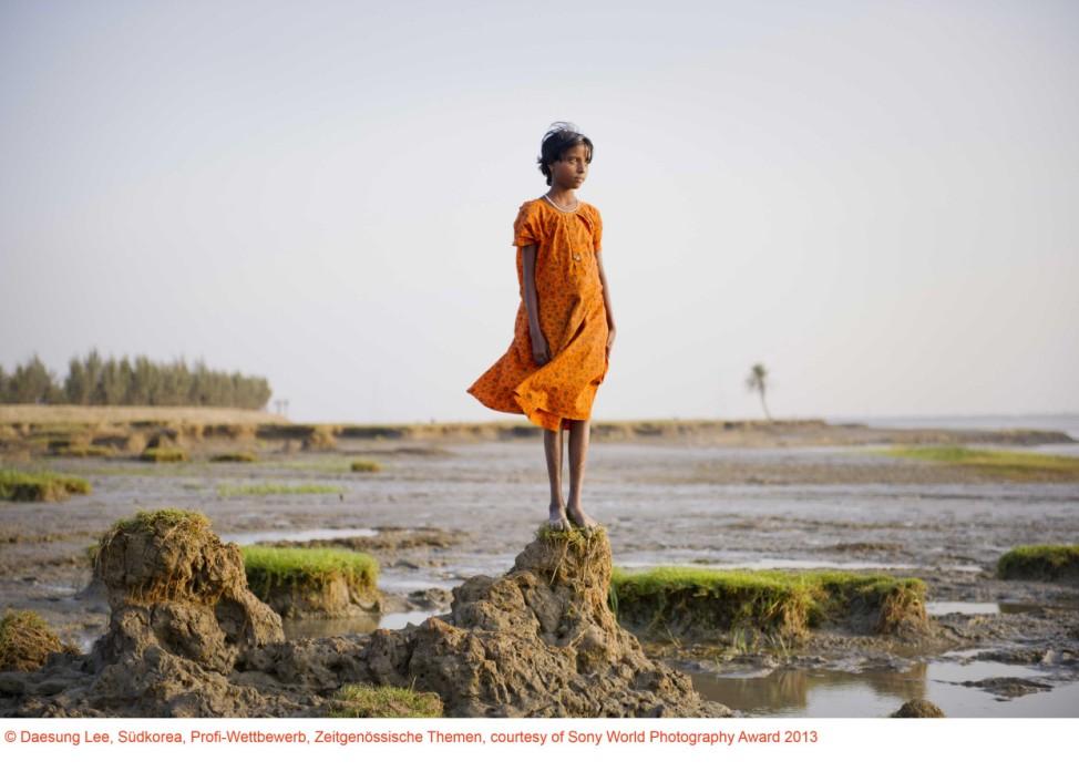 Sony World Photography Awards 2013