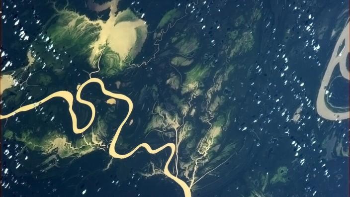 Regenwald: Unter anderem mit Hilfe von Satellitenaufnahmen haben Wissenschaftler untersucht, ob in Schutzgebieten der Kahlschlag tatsächlich langsamer voranschreitet als in anderen Regionen.