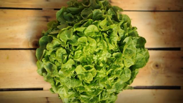 Vegetarische Ernährung, Vegan, Salat, Gemüse, Lebensmittelskandale