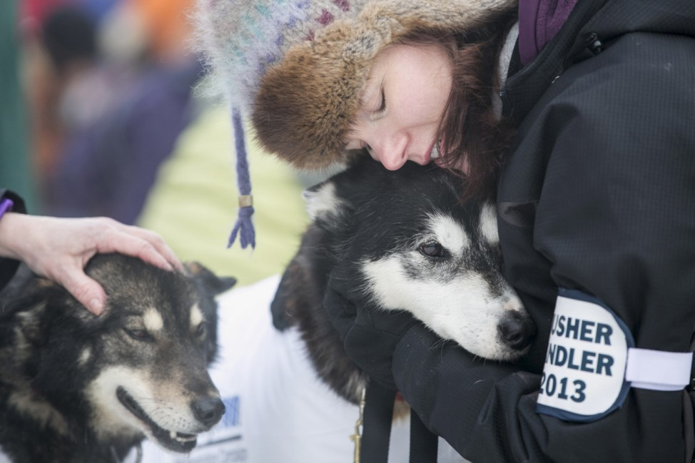 Musher handler for Stielstra's team hugs one of the dogs before lining up for the ceremonial start to the Iditarod dog sled race in downtown Anchorage, Alaska