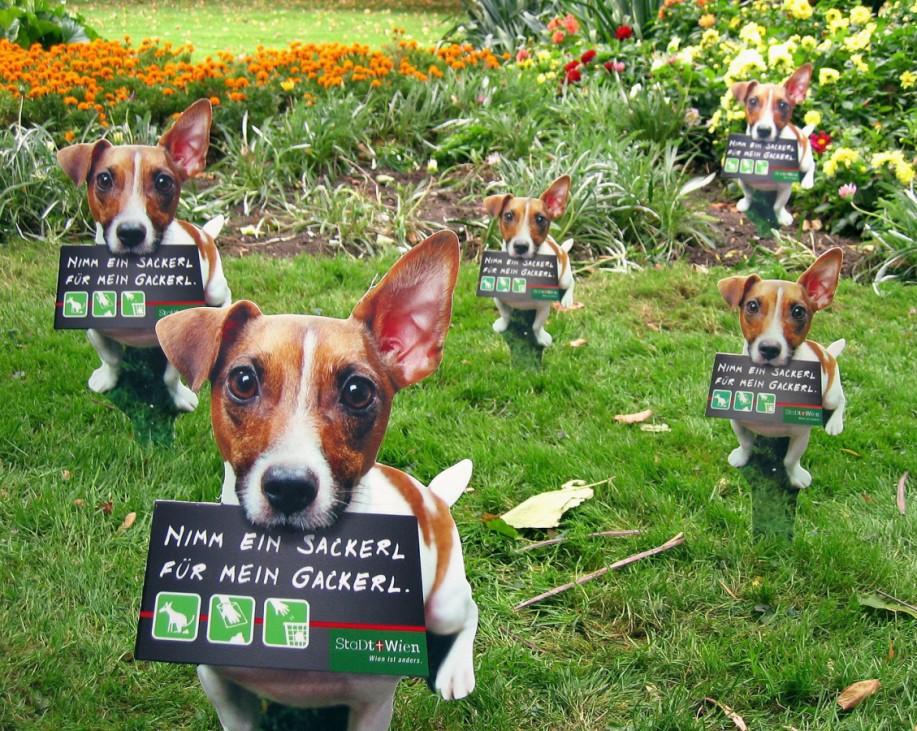 Schilder gegen Hundekot in Wien