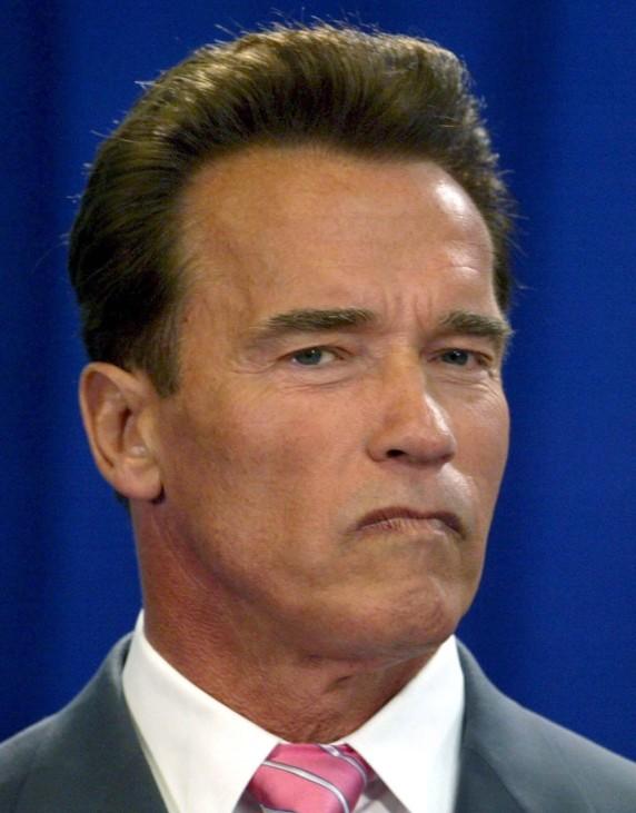 Schwarzenegger über Oscar-Absage an Stuntleute enttäuscht