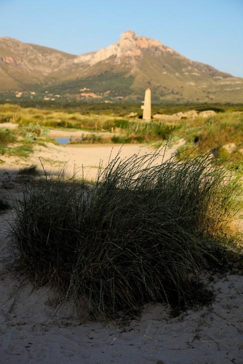 Sa Tafona de Son Fang Mallorca