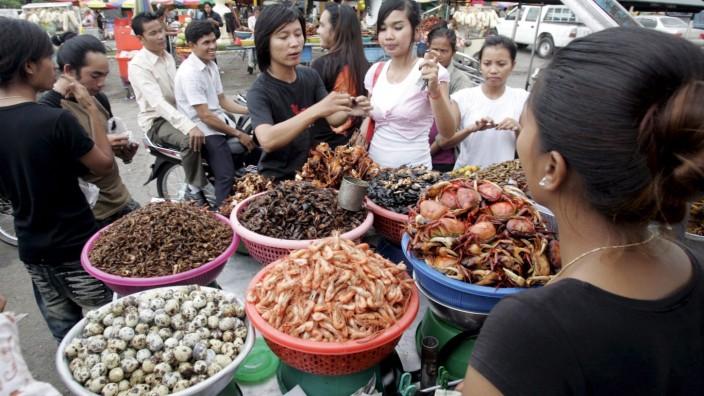 Auf einem Markt in Phnom Penh, Kambodscha, werden neben Meerestieren auch frittierte Insekten angeboten