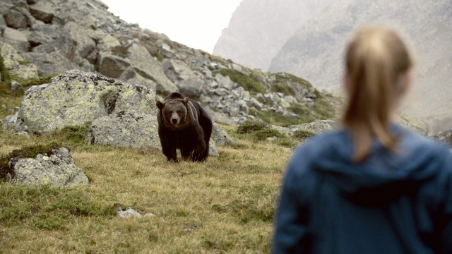 """Film """"Clara und das Geheimnis des Bären"""" im Kino"""