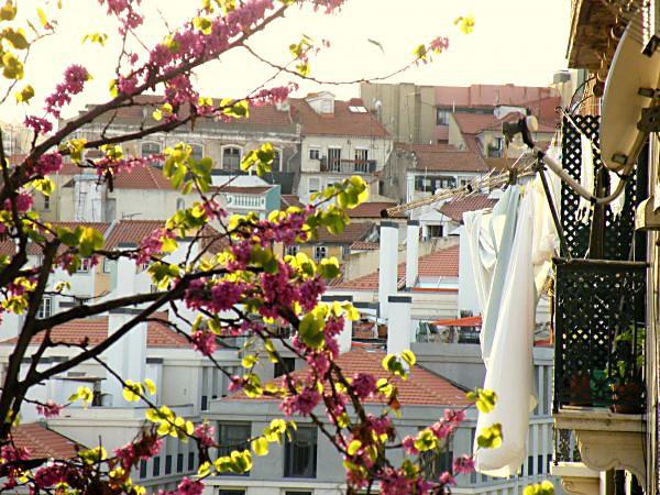 Lissabon Spotted by Locals Martim Moniz