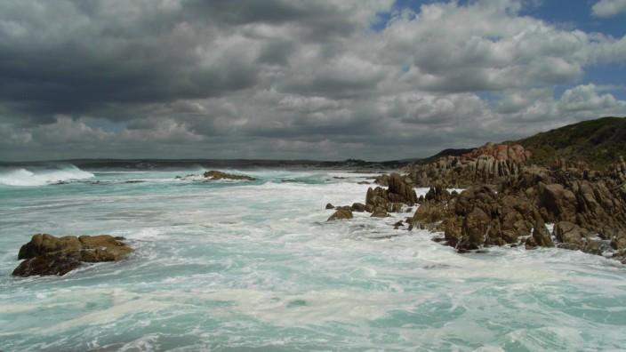 Klimawandel treibt Meeresbewohner polwärts
