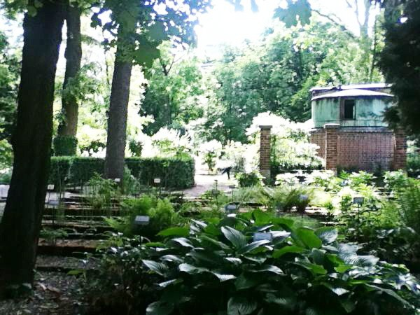 Spotted by Locals Mailand Italien Städtereise Städtetrip Botanischer Garten Brera