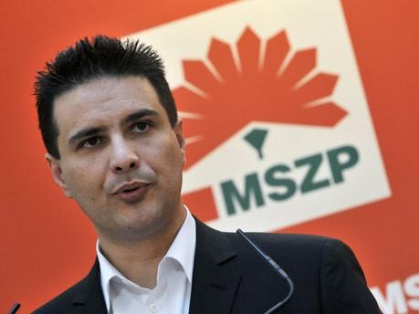 Parlamentswahl, Ungarn, Attila Mesterhazy, AP