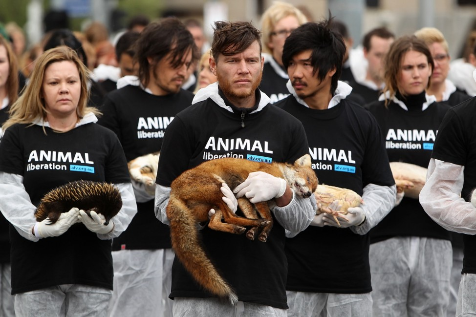 BESTPIX  Animal Activists Hold Memorial For Dead Animals In Federation Square