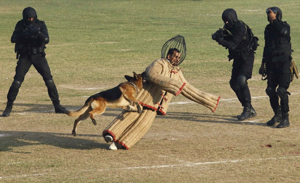 A dog chases a mock intruder during a function to celebrate the 29th Raising Day of Indian NSG in Manesar