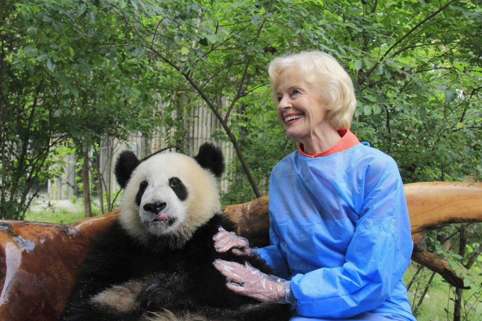 Australia's Governor-General Bryce poses with a giant panda at Chengdu Research Base of Giant Panda Breeding in Chengdu
