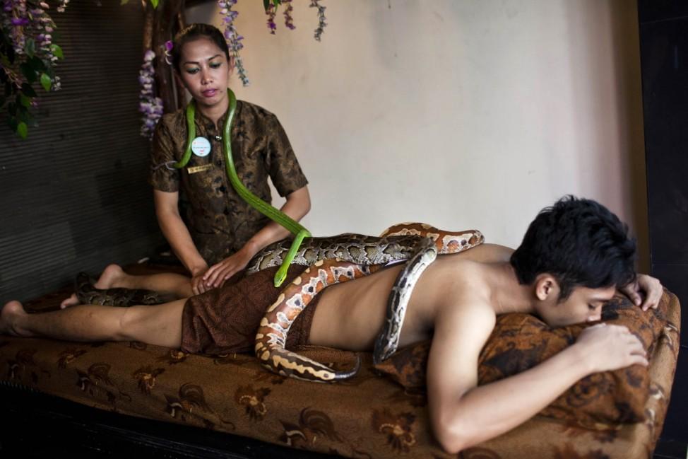Reflexology Spa Uses Pythons To Massage Clients