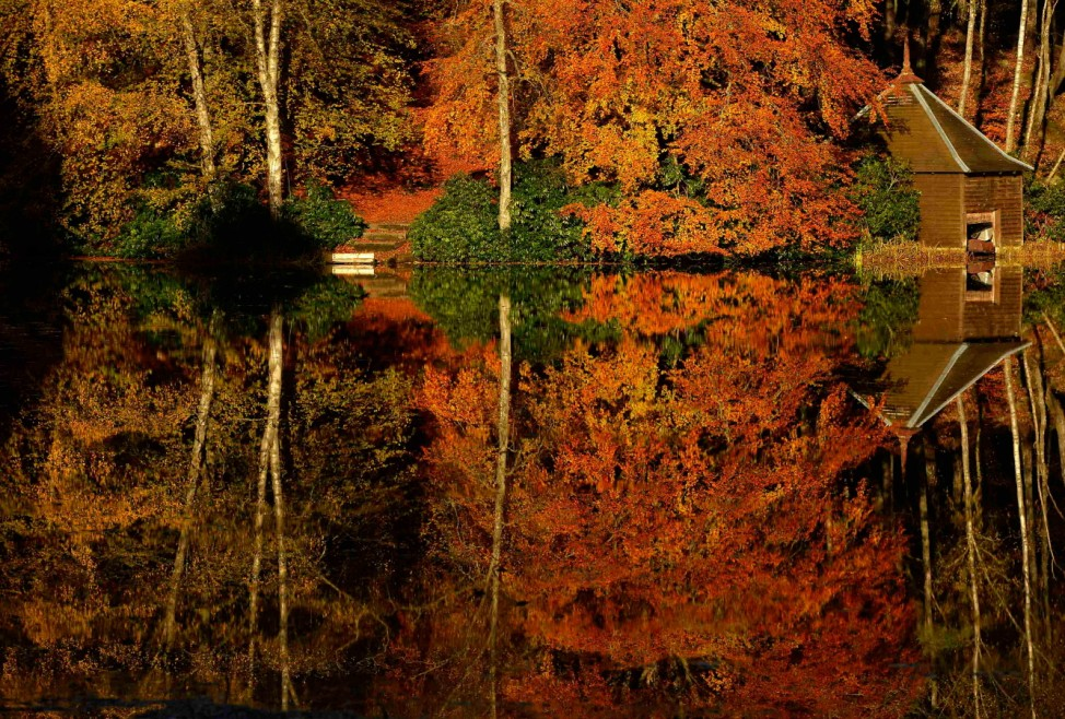 Autumnal leaves are reflected in Loch Dunmore, near Pitlochry, Scotland