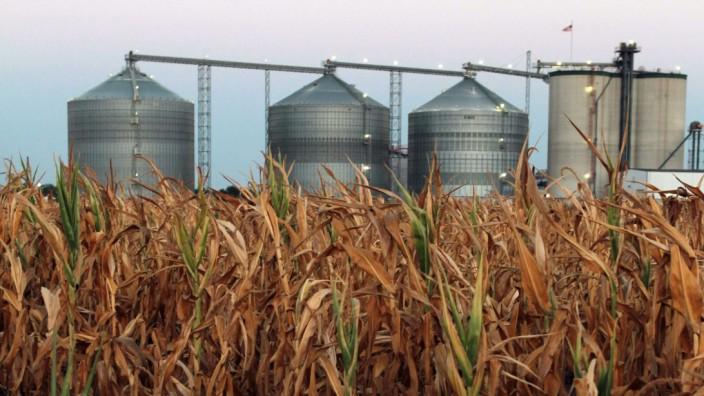 Ethanol-Fabrik von Midwest Drought in Palestine, Illinois