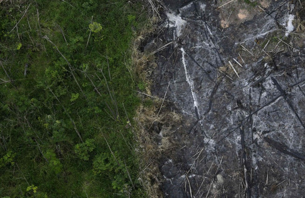 An area of the Amazon rainforest which has been slashed and burned stands next to a section of virgin forest in Nova Esperanca do Piria