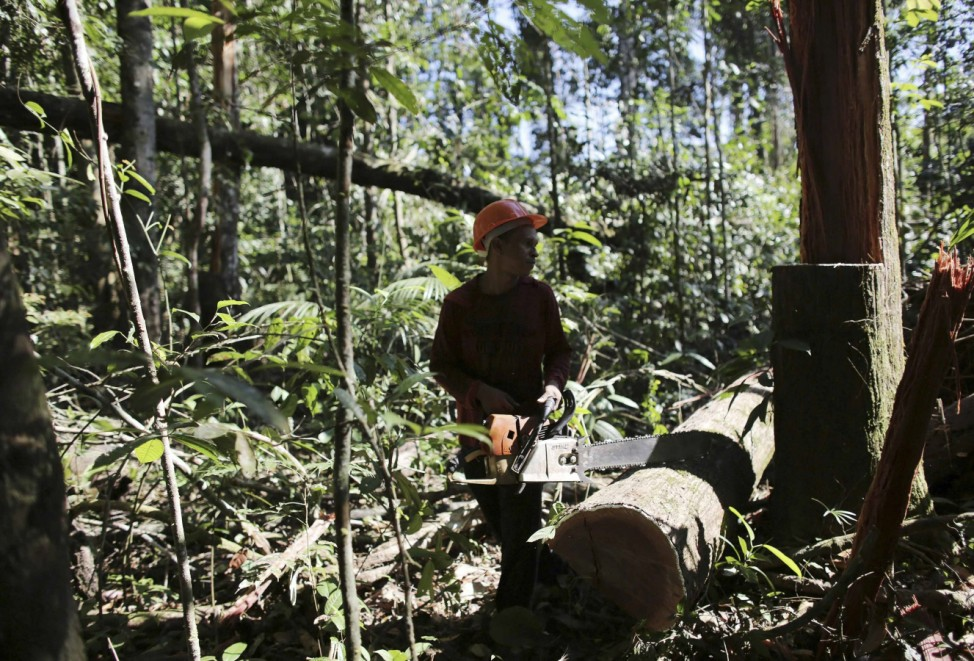 A man holds his chainsaw after illegally cutting down a tree from virgin Amazon rainforest near Morais Almeida