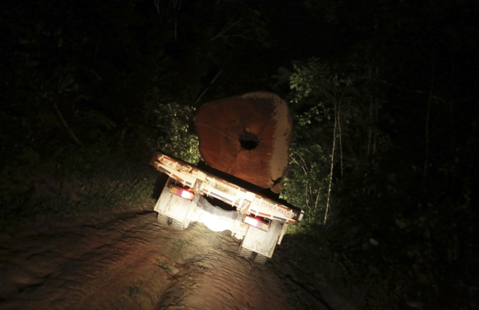 A truck carrying a tree extracted illegally from the Amazon rainforest drives at night near the city of Uruara