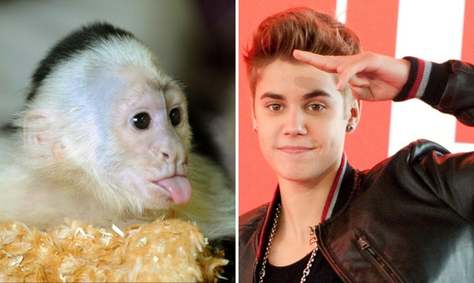 Jahresrückblick 2013 - Justin Bieber