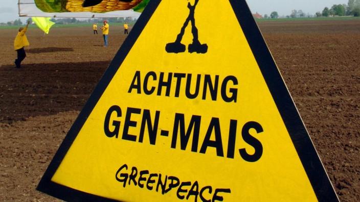 Greenpeace protestiert gegen Genmais-Anbau