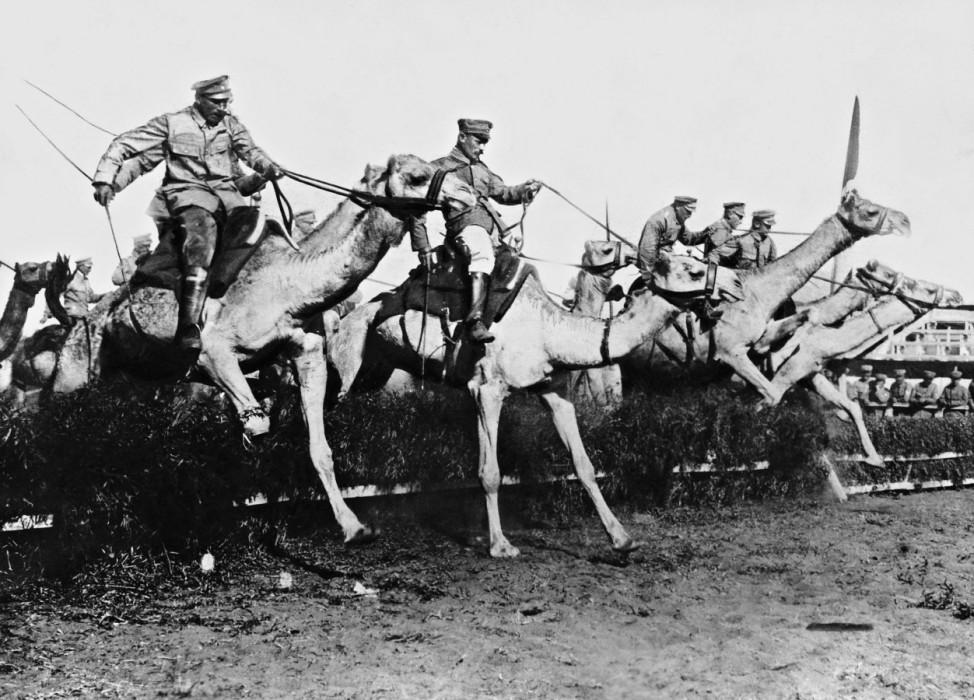 Kamelreiter bei einem Hindernisrennen