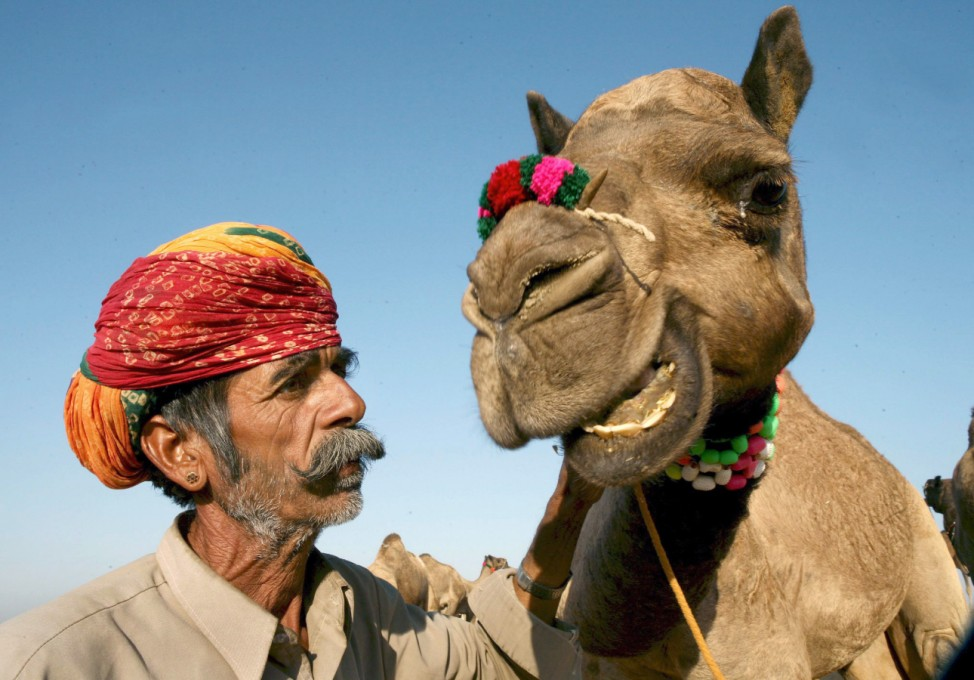 Weltgrößter Kamel- und Viehmarkt in Puskar
