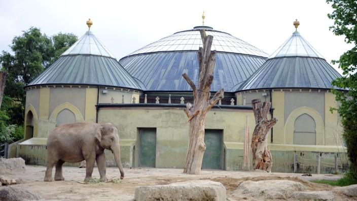 Das Elefantenhaus im Tierpark Hellabrunn.