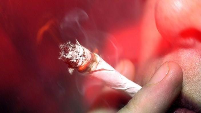 Cannabis Drogen Marihuana Rauschgift