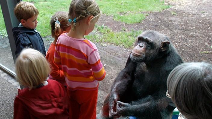 Besucher im Tierpark Hellabrun