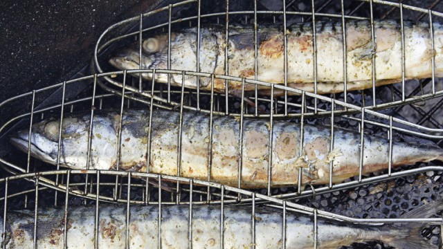 grillen, glut, kohle, grillkohle, grillmeister, grillbesteck, grillkorb