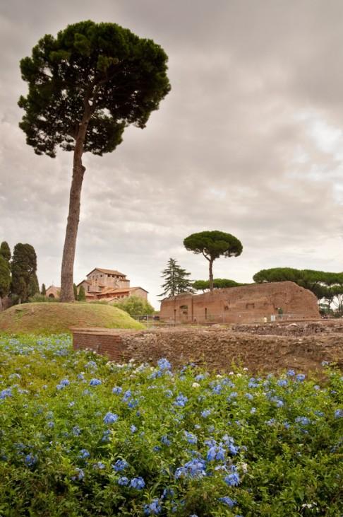 Rom, Italien, Palatin
