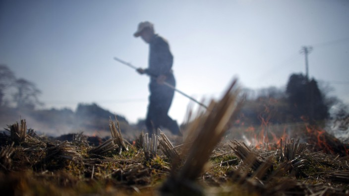 A man burns a rice field in preparation for planting near Fukushima, northern Japan