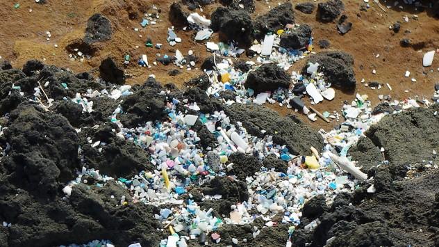 Susanne Tölzel Plastik Konfetti Hawaii Ozean