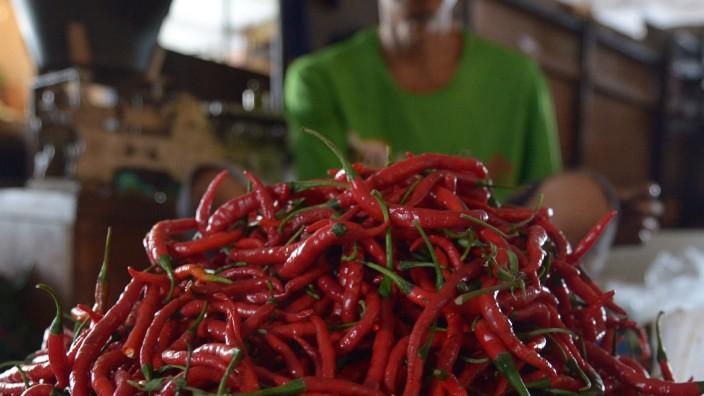 Scharfes Essen: Chili-Schoten enthalten Capsaicin, der Stoff macht die Früchte so scharf
