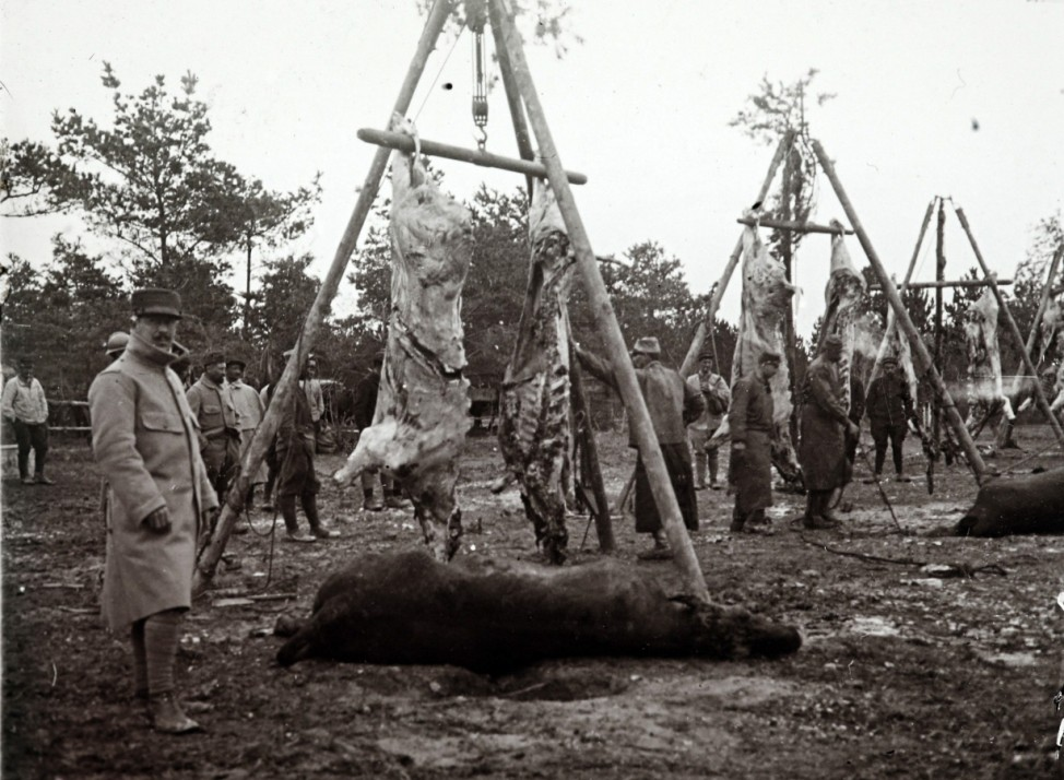 An undated archive picture shows carcasses of animals strung up before being cooked for soldiers, on the Champagne front, eastern France