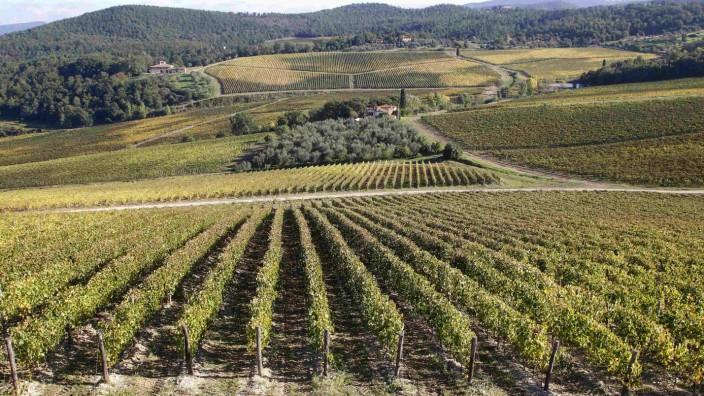 To match Reuters Life! WINE-ITALY/FRESCOBALDI