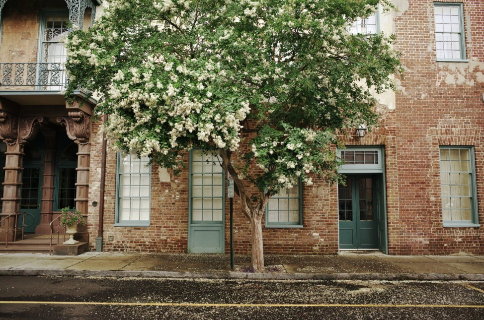 Charleston USA South Carolina Städtereise Sklaverei Gullah Tipps